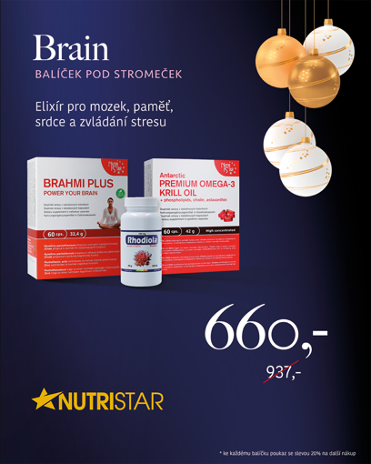 """Picture of 🎄 """"BRAIN"""" - Christmas package under the tree at an exclusive price"""